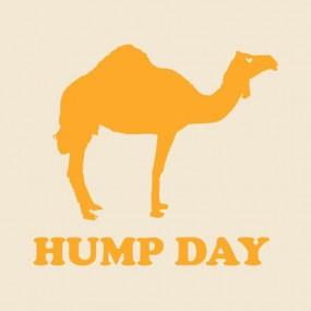 hump-day-1